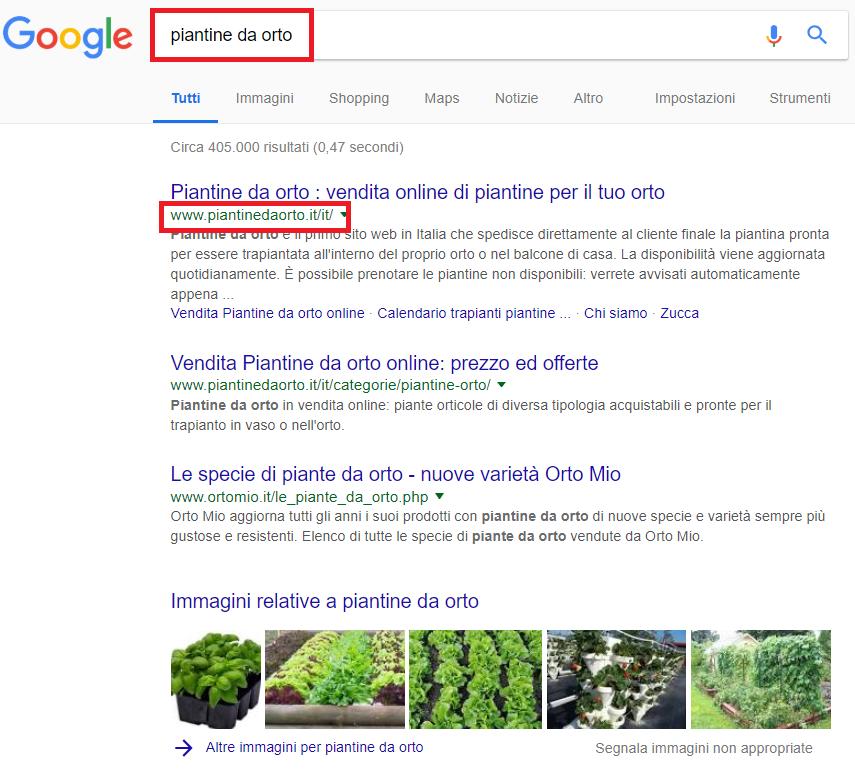 """Per la query """"piantine da orto"""" abbiamo trovato il dominio che corrisponde alla keyword (piantinedaorto.it) all'interno dei risultati di ricerca organici."""