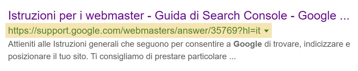 Google può anche mostrare l'URL nello Snippet