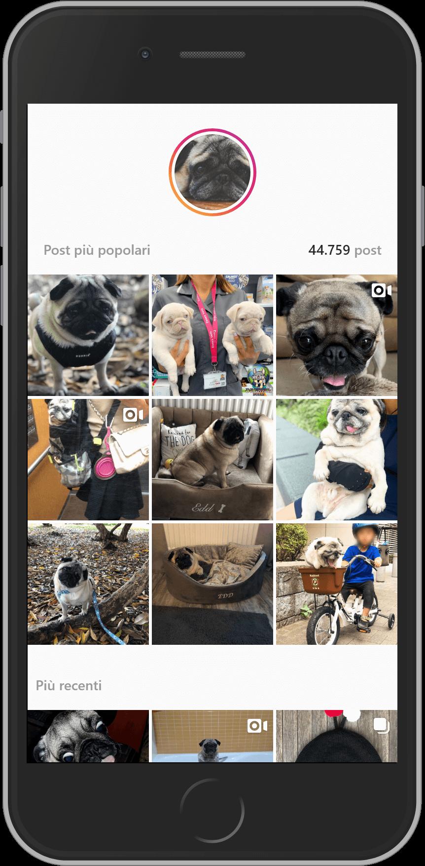 Esempio di ricerca su Instagram