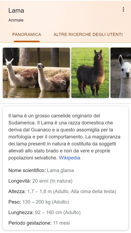 Esempio di Rich Snippet da Google