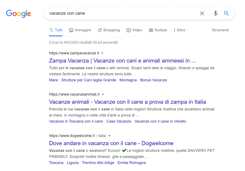 """Primi tre risultati per la keyword """"vacanze con cane"""""""